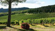 Волшебство провинции: 15 уютных уголков Италии