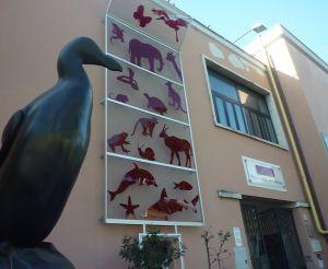 Музей зоологии, Рим