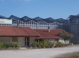 Ферма бабочек д'Абруццо, Читта-Сант-Анджело