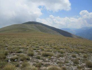 Mountain Monte Genziana, Talana Comune