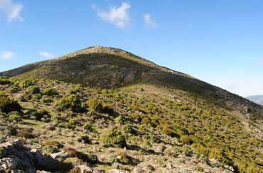 Mountain Monte Orguda, Villagrande Strisaili