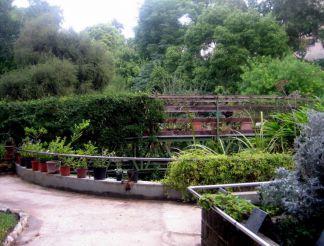 Botanical Garden, Cagliari