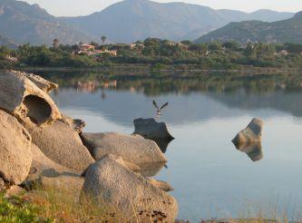 Notteri Pond, Cagliari