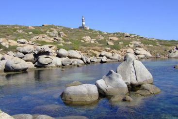 Cavoli Island