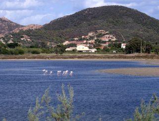 Pond Chia, Domus de Maria