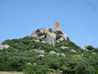 Castle of Pedres, Olbia
