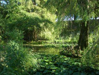 Botanical Garden, Lucca