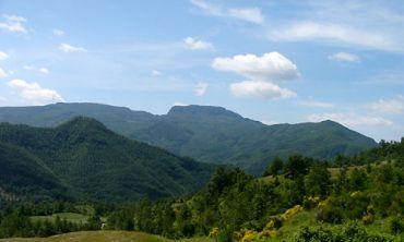 National park Foreste Casentinesi, Emilia Romagna