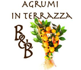Bed and breakfast Agrumi in terrazza