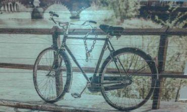 Trastevere & Free Bikes