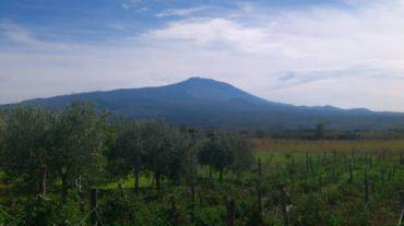 Etna House