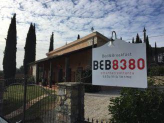 B&B 8380